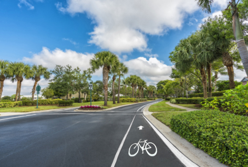 Gated community street with bike lane and palms in South Florida, United State